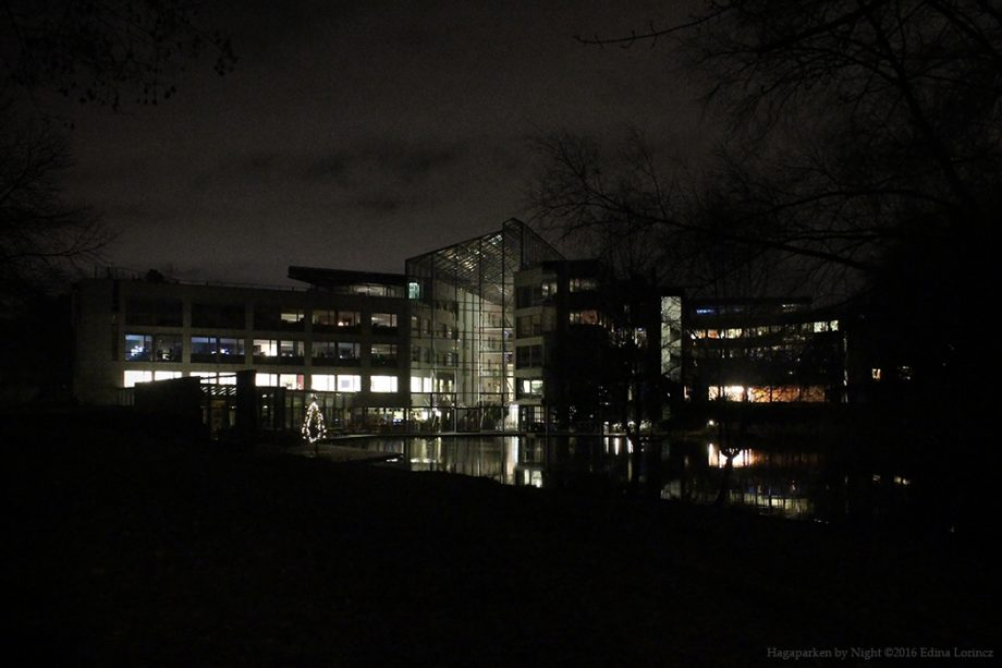 Hagaparken by Night